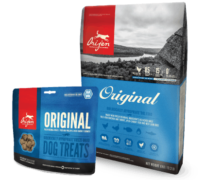 Pet owners accuse Champion of allowing heavy metals, toxins in pet food; Company says it's a copycat of failed lawsuit